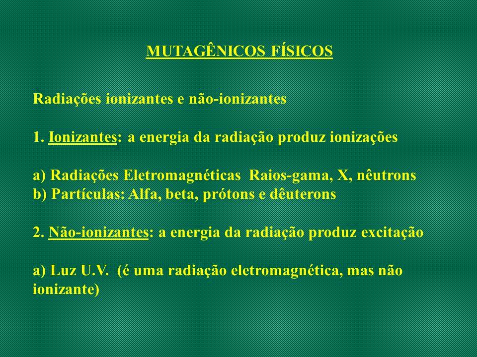 MUTAGÊNICOS FÍSICOS Radiações ionizantes e não-ionizantes. 1. Ionizantes: a energia da radiação produz ionizações.