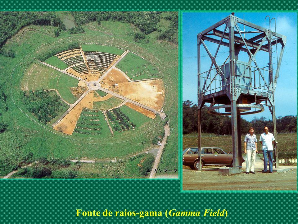 Fonte de raios-gama (Gamma Field)