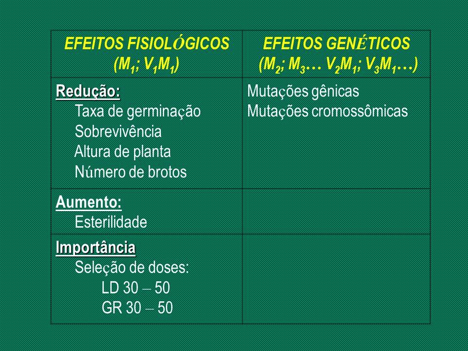 EFEITOS FISIOLÓGICOS (M1; V1M1) EFEITOS GENÉTICOS. (M2; M3… V2M1; V3M1…) Redução: Taxa de germinação.