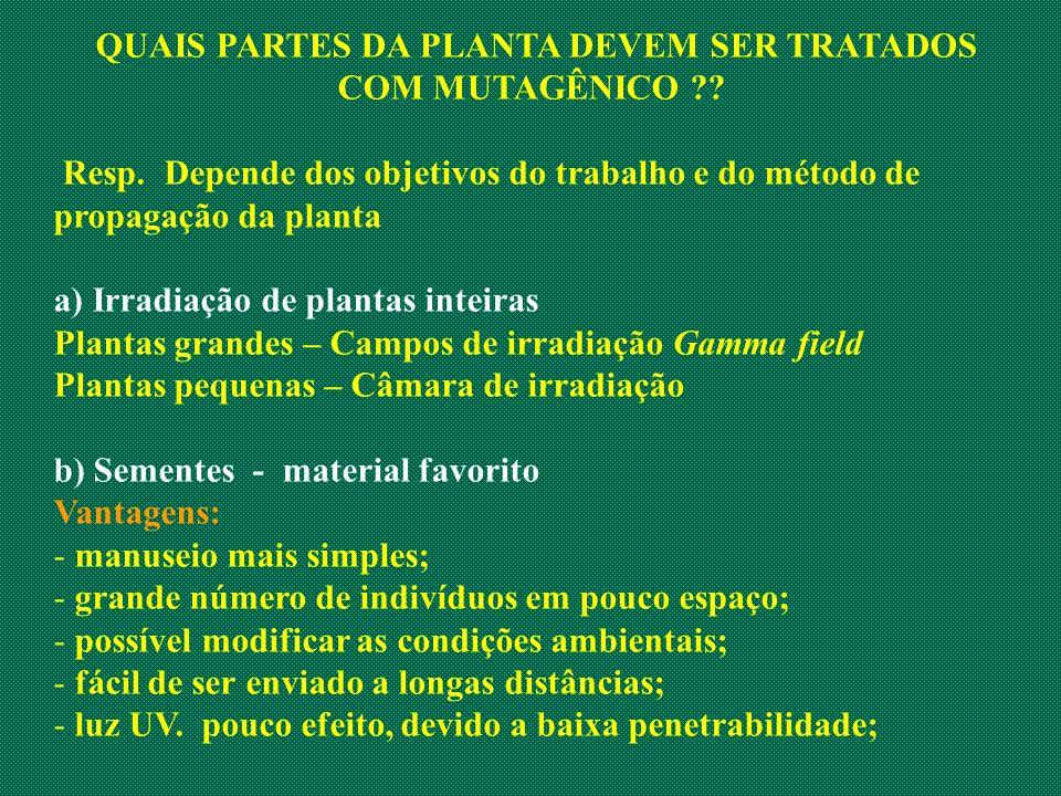 QUAIS PARTES DA PLANTA DEVEM SER TRATADOS COM MUTAGÊNICO
