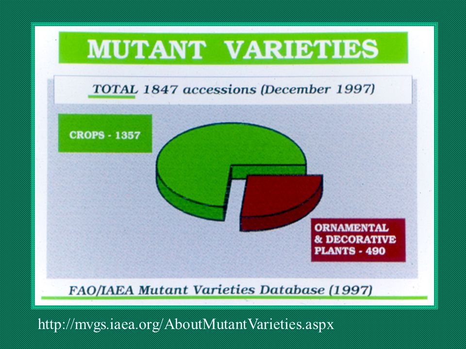 http://mvgs.iaea.org/AboutMutantVarieties.aspx