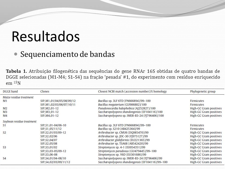 Resultados Sequenciamento de bandas