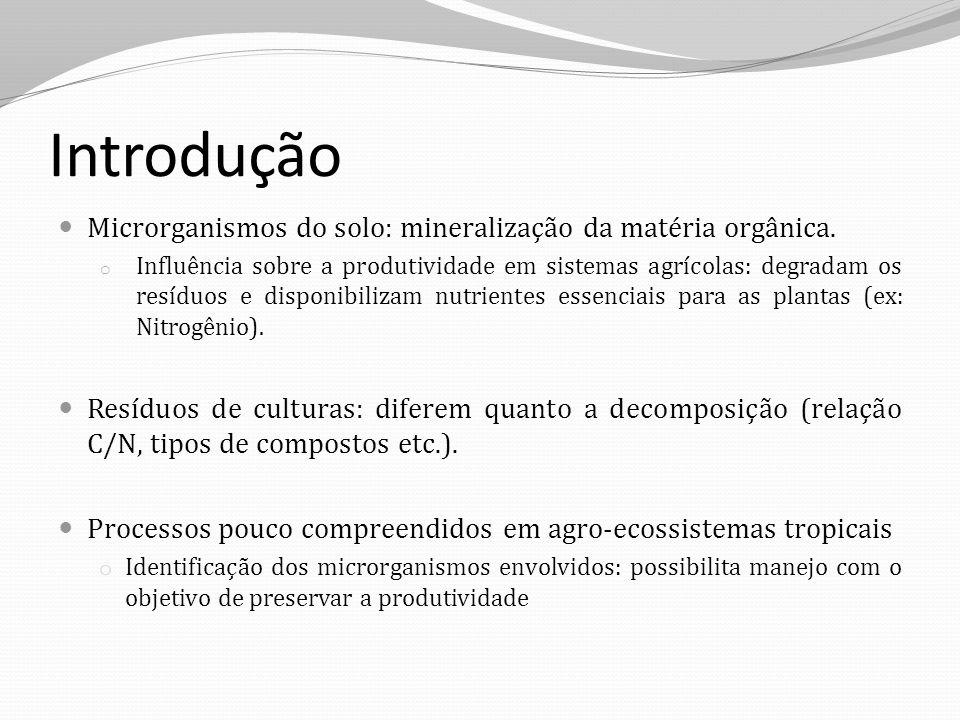Introdução Microrganismos do solo: mineralização da matéria orgânica.