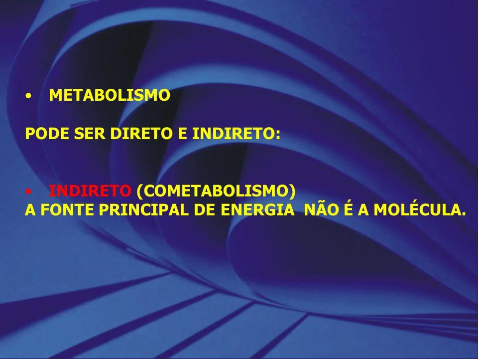 METABOLISMO PODE SER DIRETO E INDIRETO: INDIRETO (COMETABOLISMO) A FONTE PRINCIPAL DE ENERGIA NÃO É A MOLÉCULA.