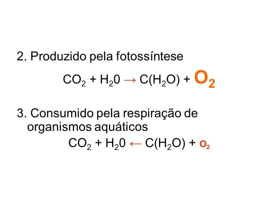 2. Produzido pela fotossíntese