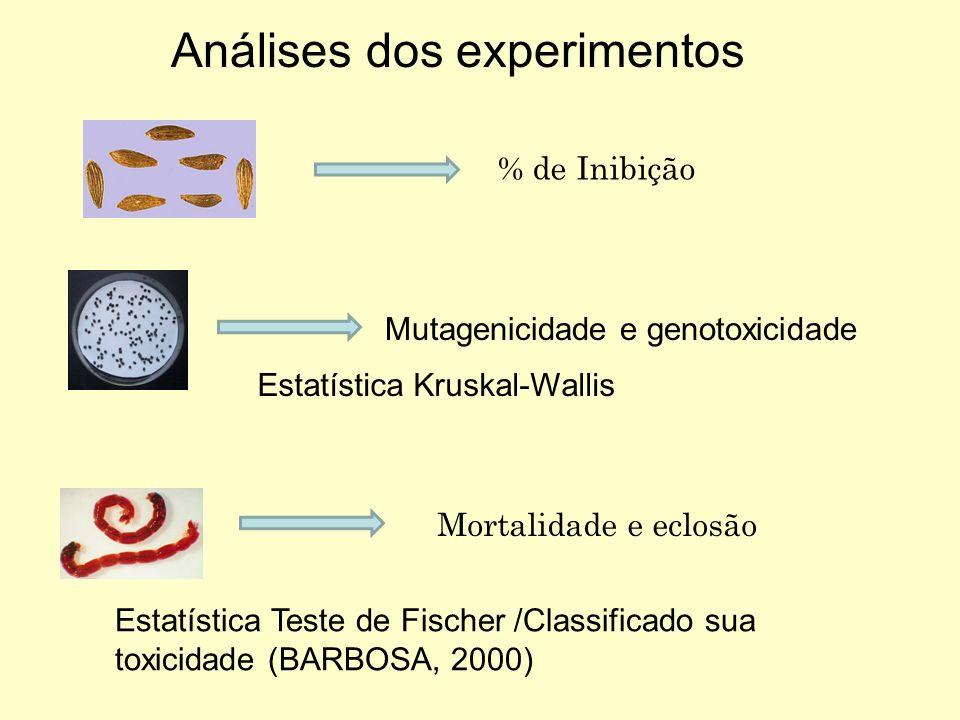 Análises dos experimentos