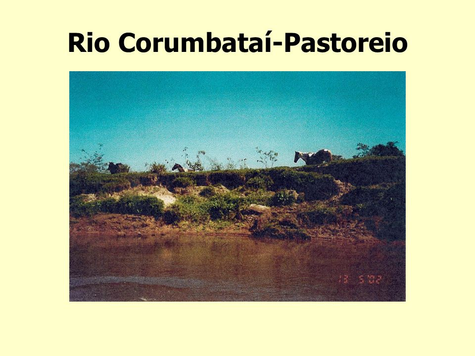 Rio Corumbataí-Pastoreio