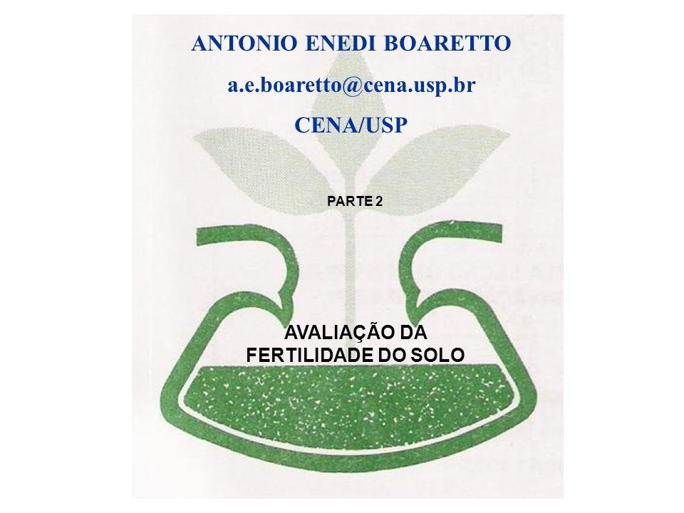 ANTONIO ENEDI BOARETTO