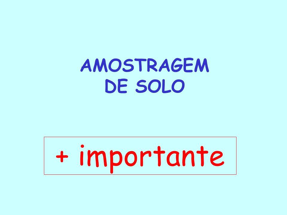 AMOSTRAGEM DE SOLO + importante