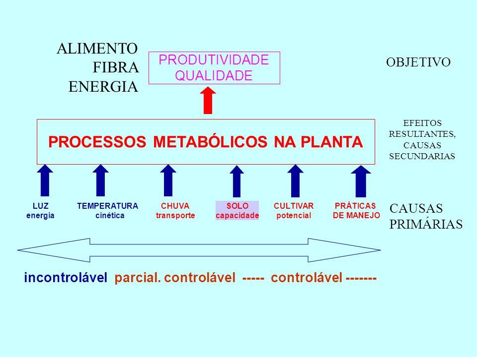 PROCESSOS METABÓLICOS NA PLANTA