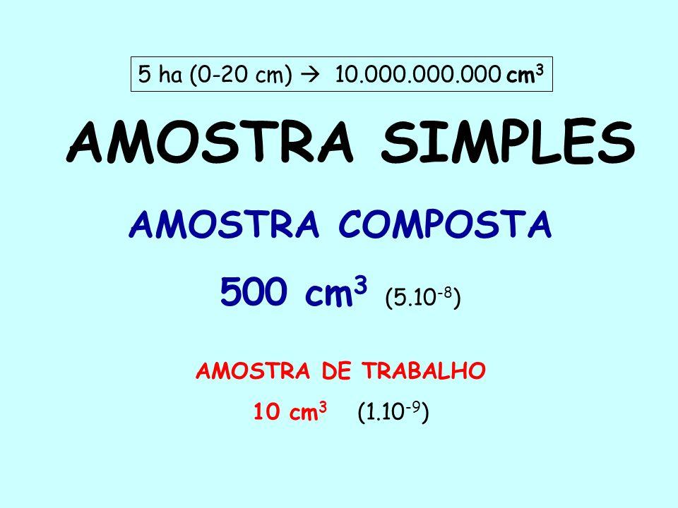 AMOSTRA SIMPLES AMOSTRA COMPOSTA 500 cm3 (5.10-8)