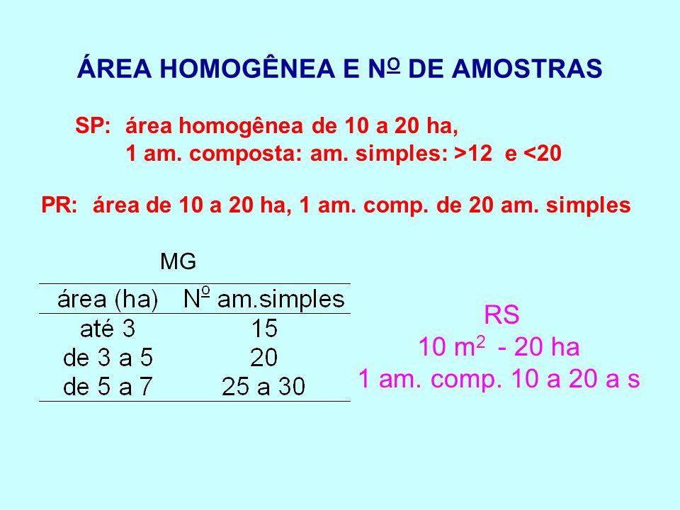 ÁREA HOMOGÊNEA E NO DE AMOSTRAS