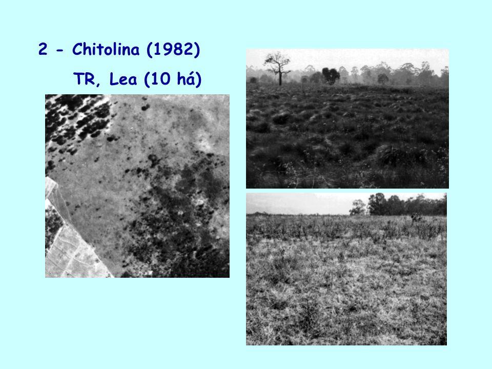 2 - Chitolina (1982) TR, Lea (10 há)
