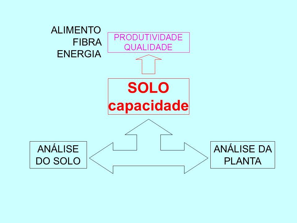 SOLO capacidade ALIMENTO FIBRA ENERGIA ANÁLISE DO SOLO