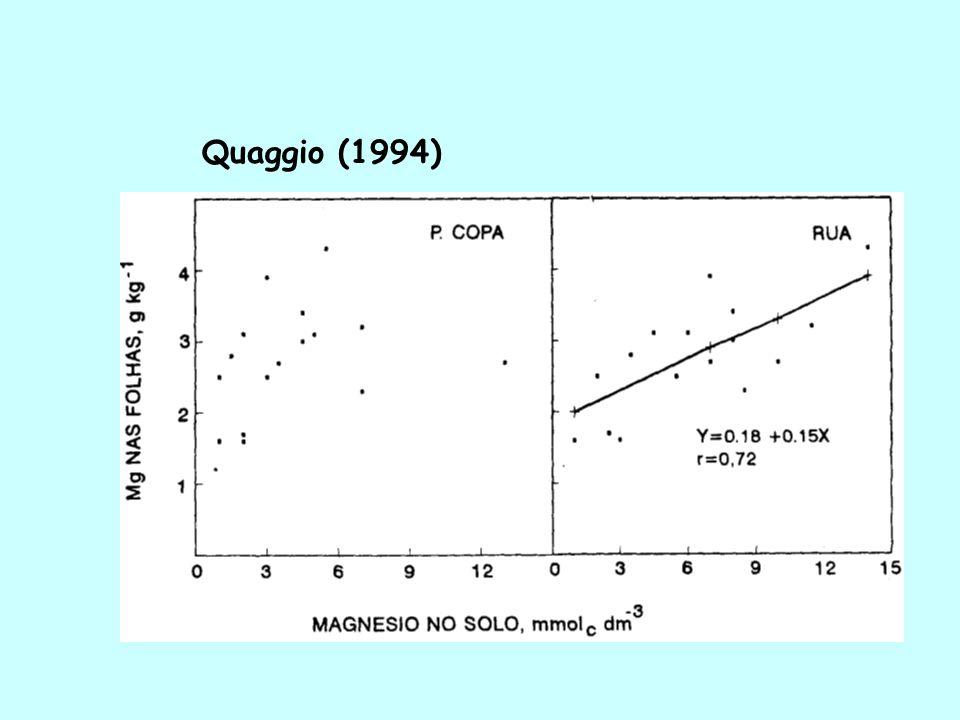 Quaggio (1994)