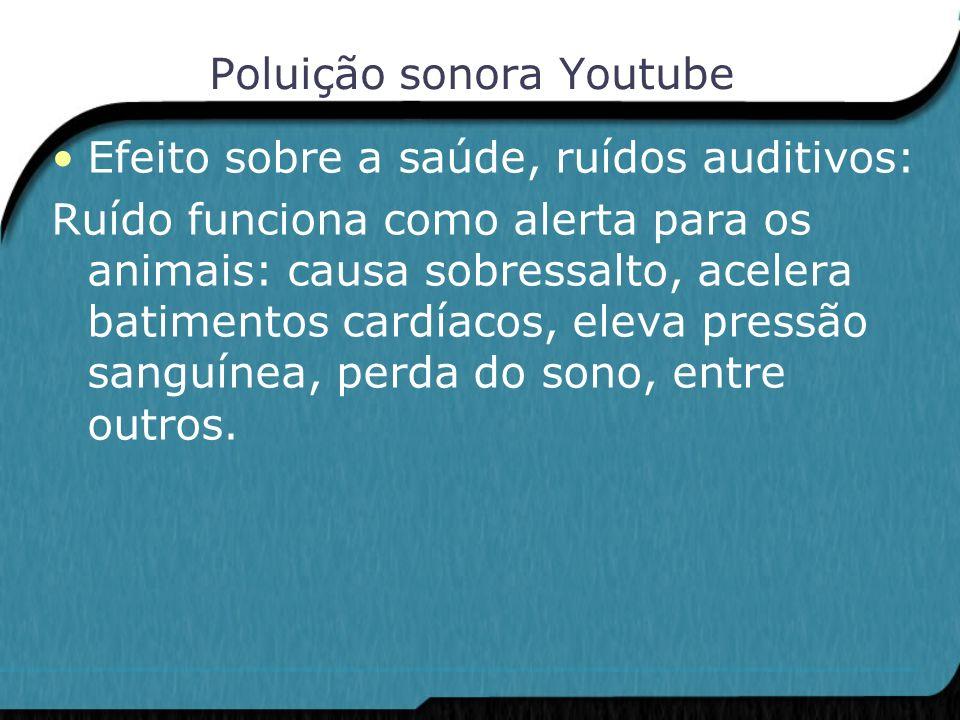 Poluição sonora Youtube