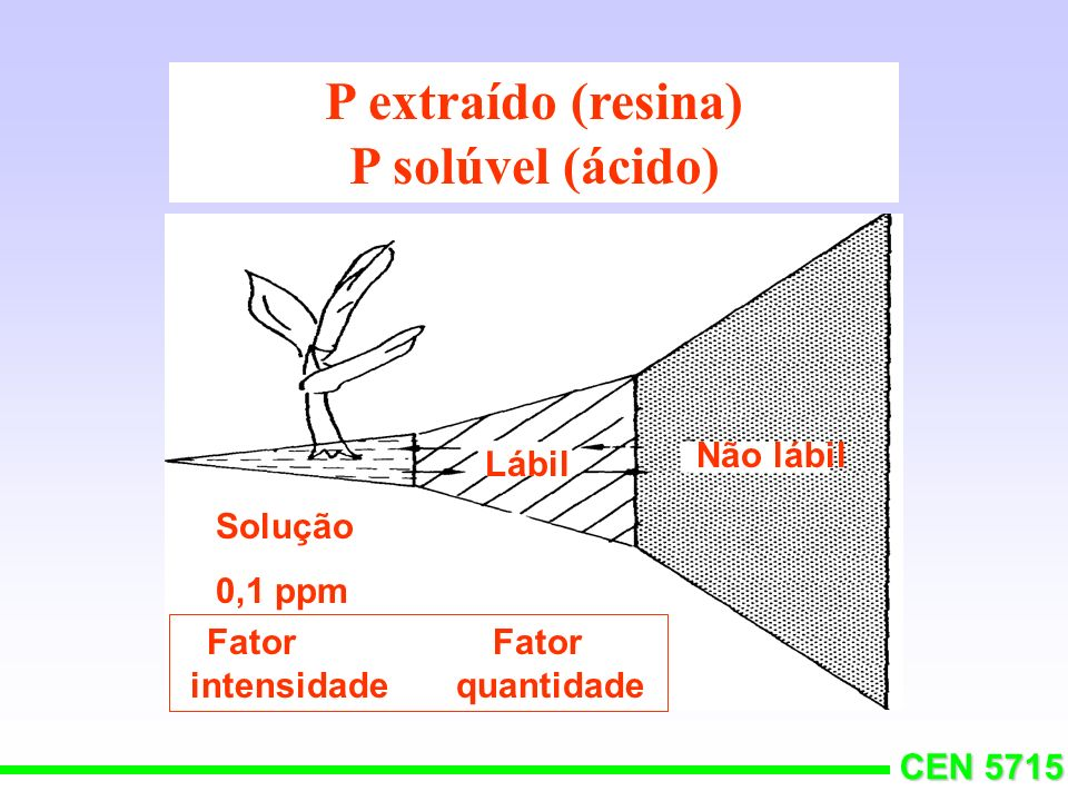 P extraído (resina) P solúvel (ácido)