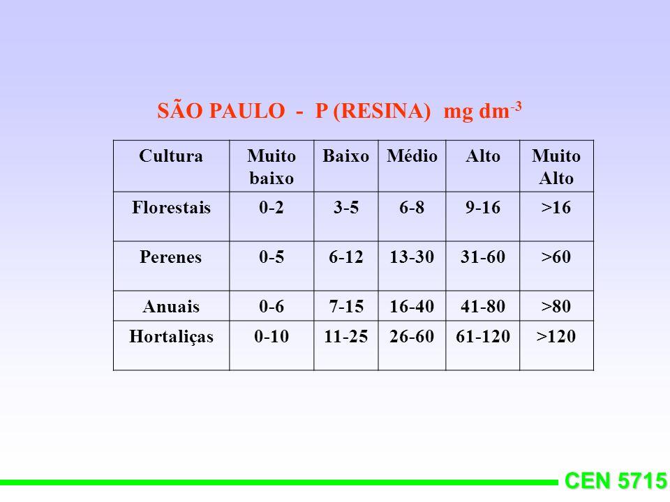 SÃO PAULO - P (RESINA) mg dm-3