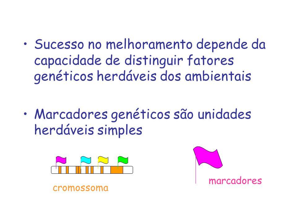 Marcadores genéticos são unidades herdáveis simples