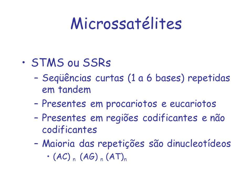 Microssatélites STMS ou SSRs