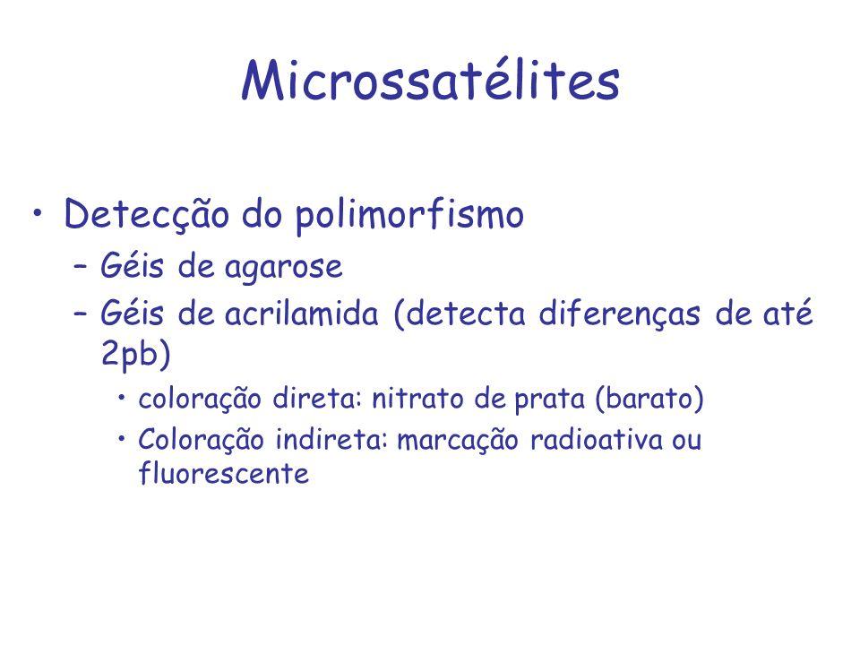 Microssatélites Detecção do polimorfismo Géis de agarose