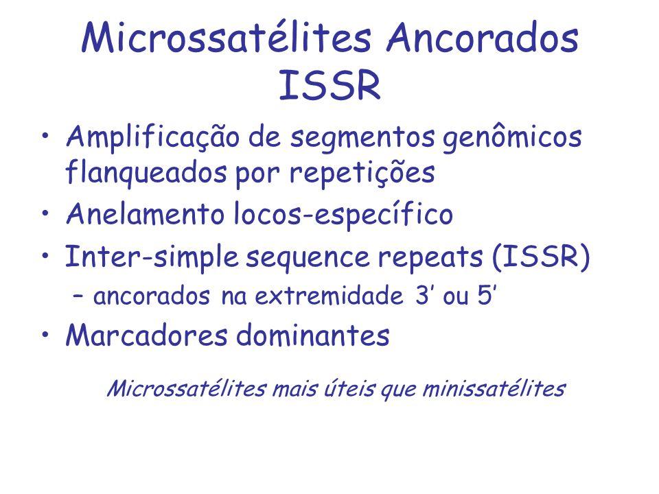 Microssatélites Ancorados ISSR