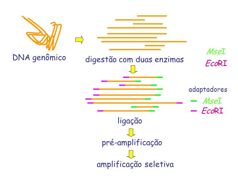 digestão com duas enzimas EcoRI
