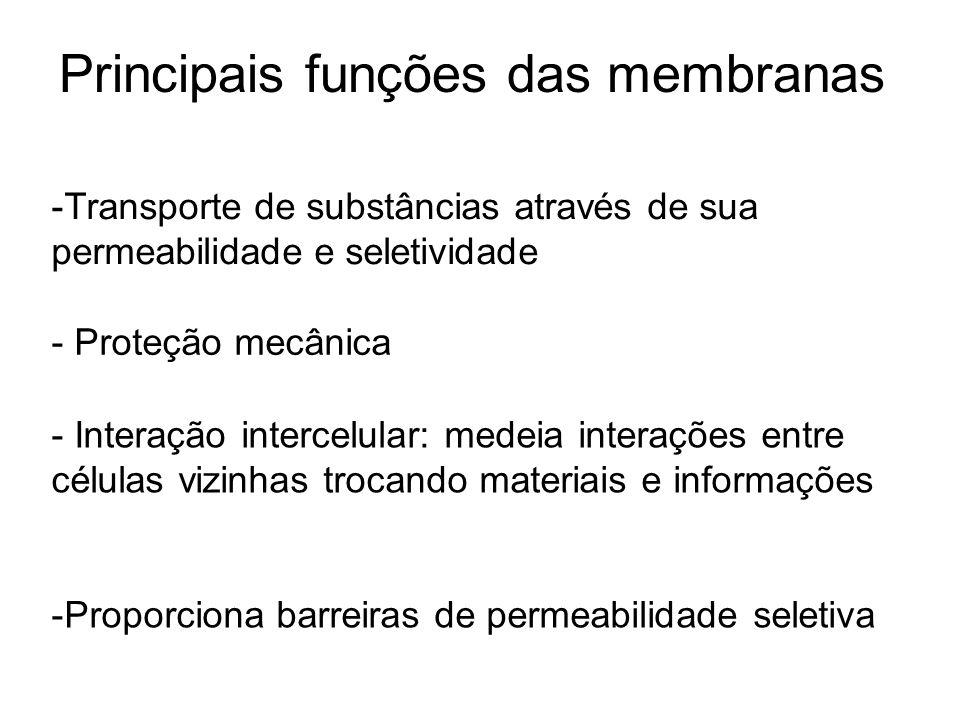 Principais funções das membranas