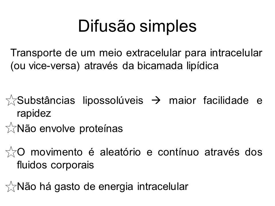Difusão simples Transporte de um meio extracelular para intracelular (ou vice-versa) através da bicamada lipídica.
