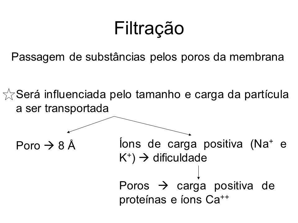 Filtração Passagem de substâncias pelos poros da membrana