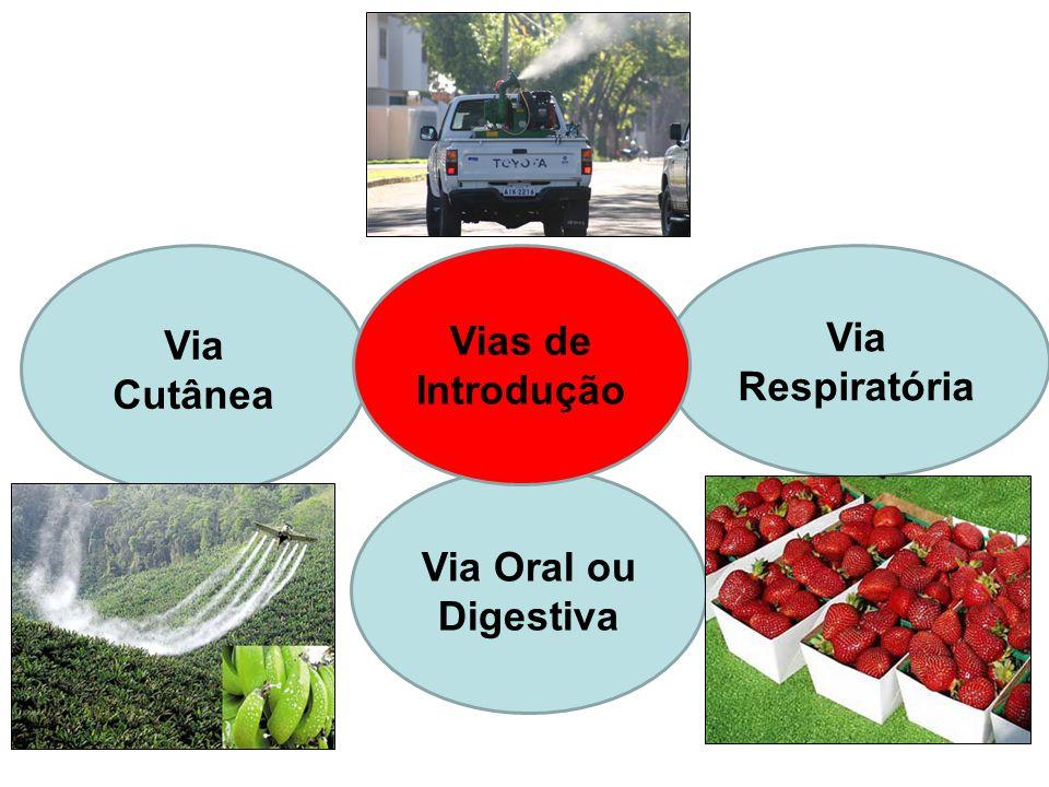 Via Cutânea Vias de Introdução Via Respiratória Via Oral ou Digestiva