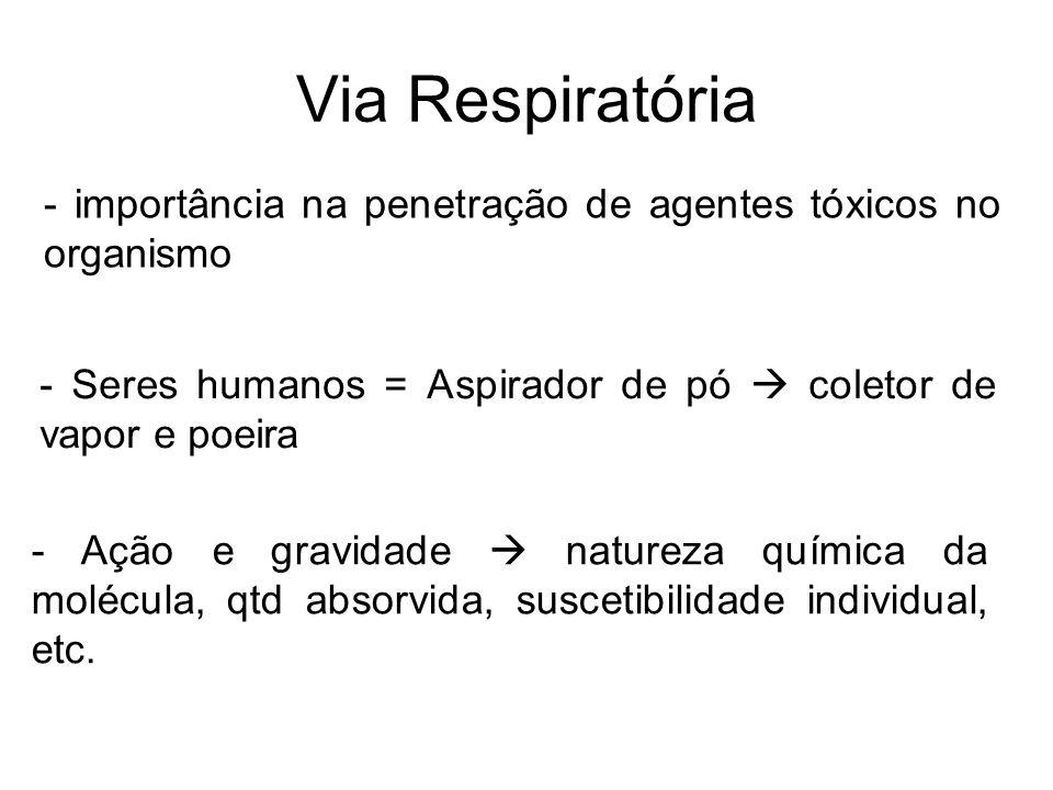 Via Respiratória - importância na penetração de agentes tóxicos no organismo. - Seres humanos = Aspirador de pó  coletor de vapor e poeira.