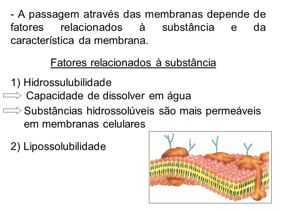 - A passagem através das membranas depende de fatores relacionados à substância e da característica da membrana.
