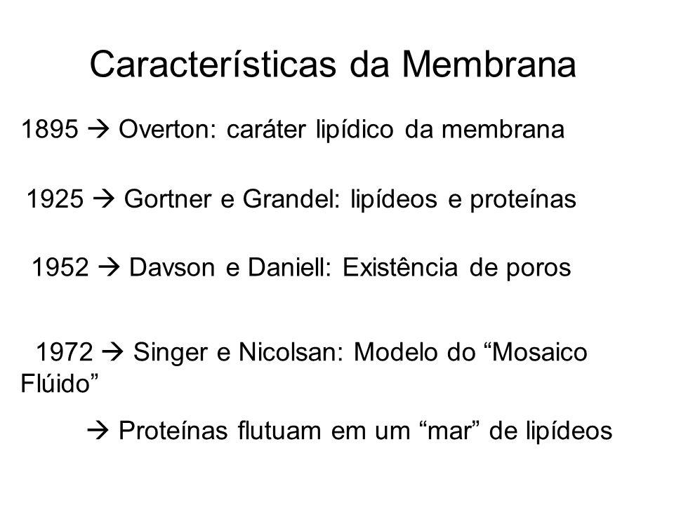 Características da Membrana