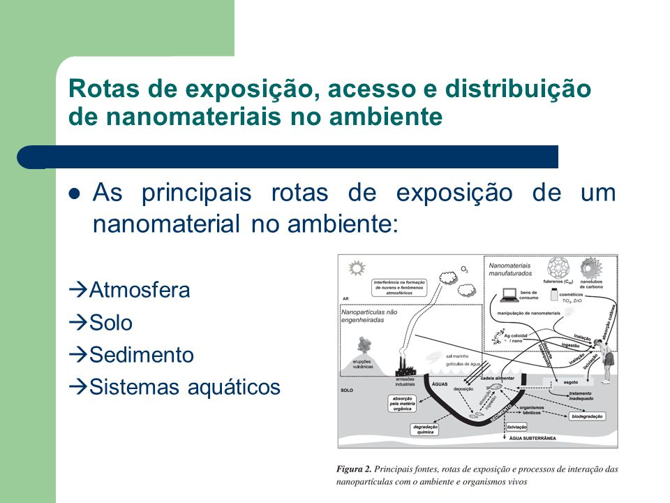 Rotas de exposição, acesso e distribuição de nanomateriais no ambiente