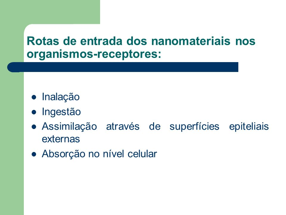 Rotas de entrada dos nanomateriais nos organismos-receptores:
