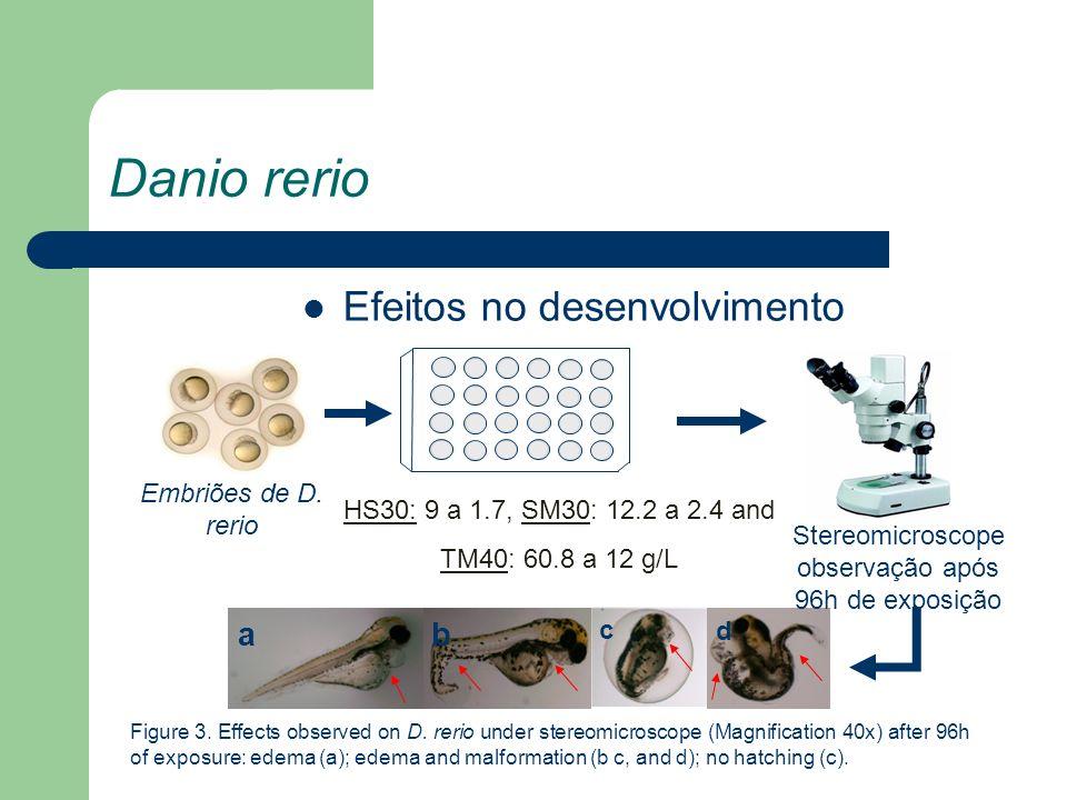 Danio rerio Efeitos no desenvolvimento a b Embriões de D. rerio
