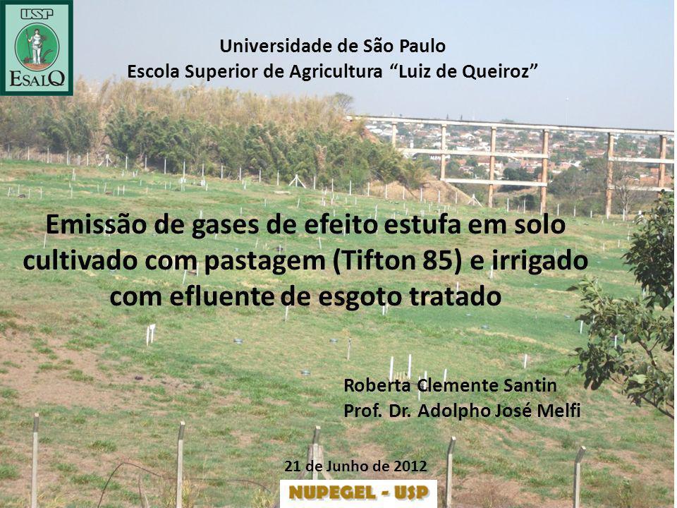 Universidade de São Paulo Escola Superior de Agricultura Luiz de Queiroz