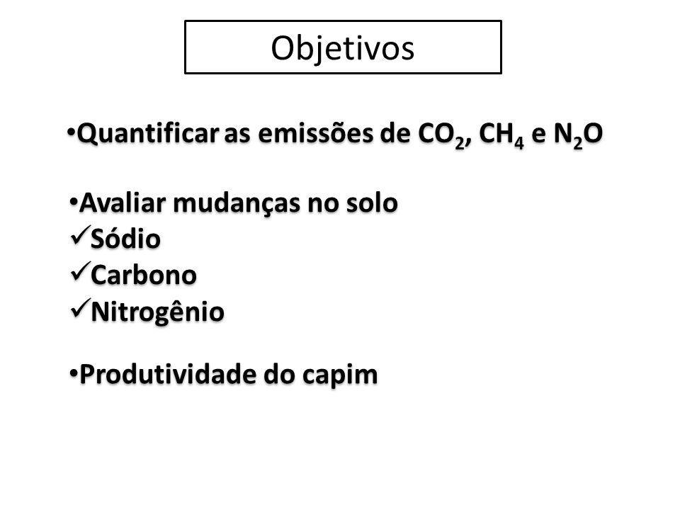 Quantificar as emissões de CO2, CH4 e N2O