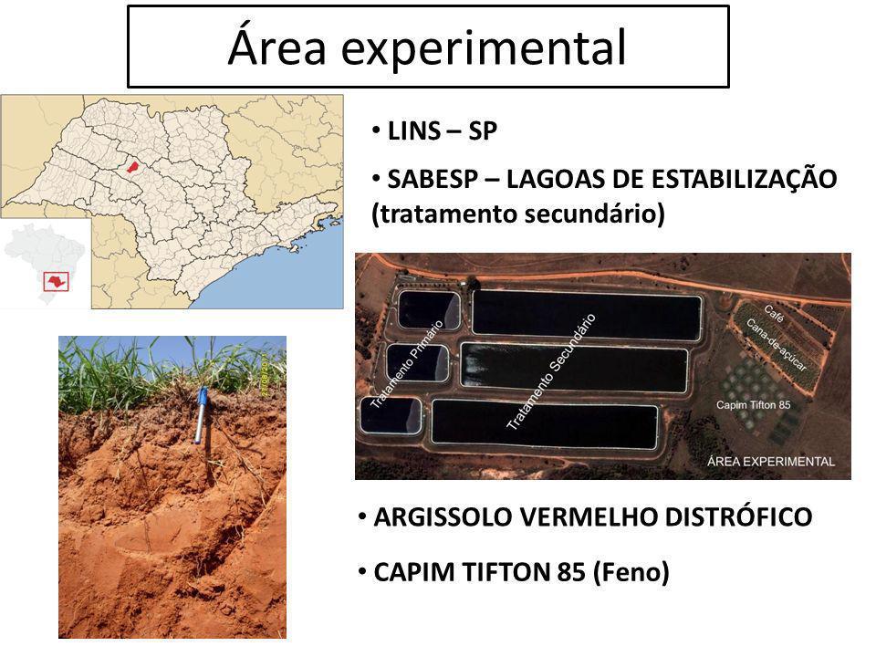 Área experimental LINS – SP SABESP – LAGOAS DE ESTABILIZAÇÃO