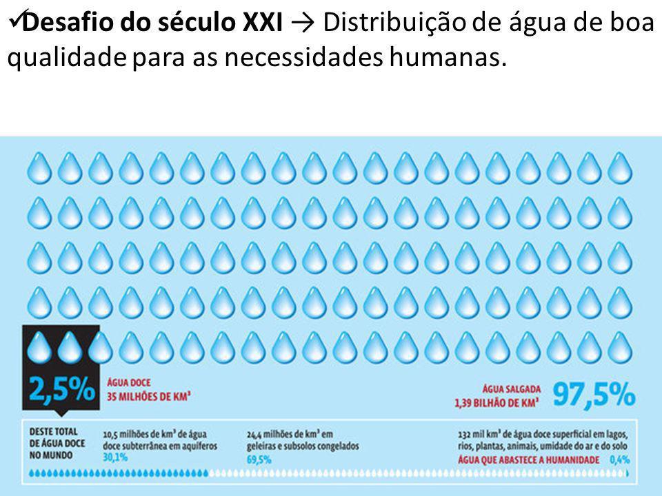 Desafio do século XXI → Distribuição de água de boa qualidade para as necessidades humanas.