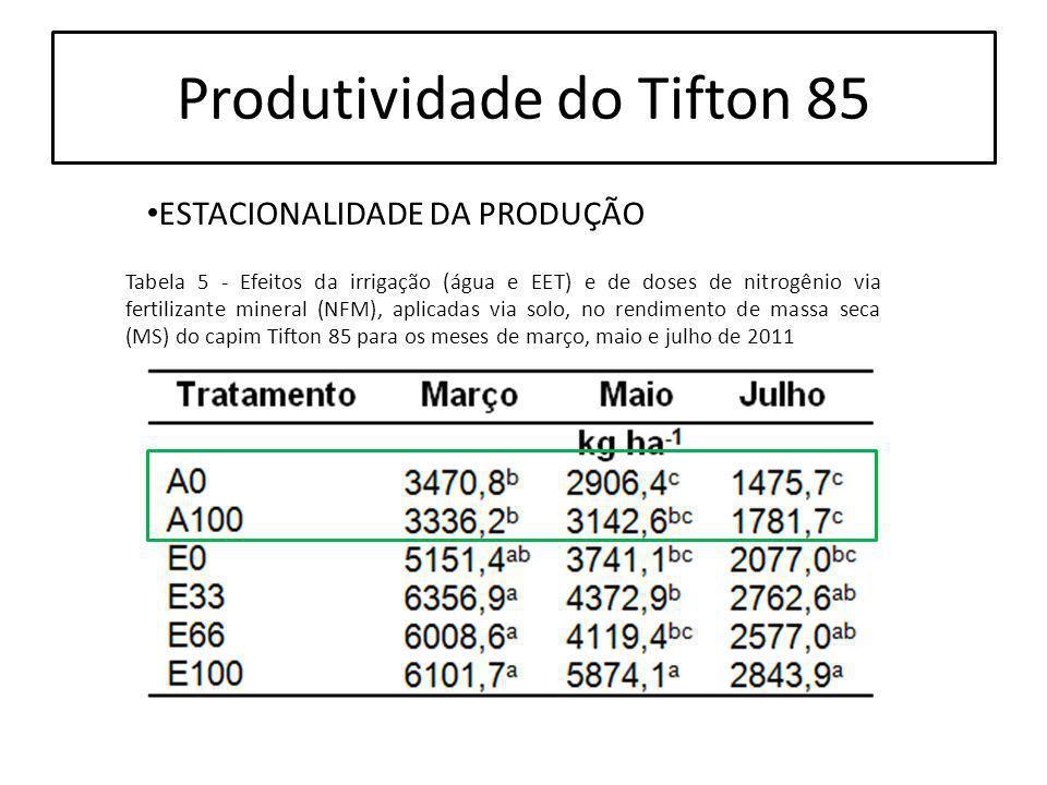 Produtividade do Tifton 85