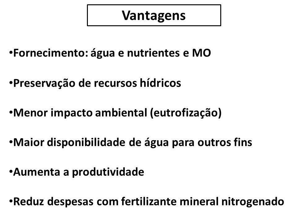 Vantagens Fornecimento: água e nutrientes e MO