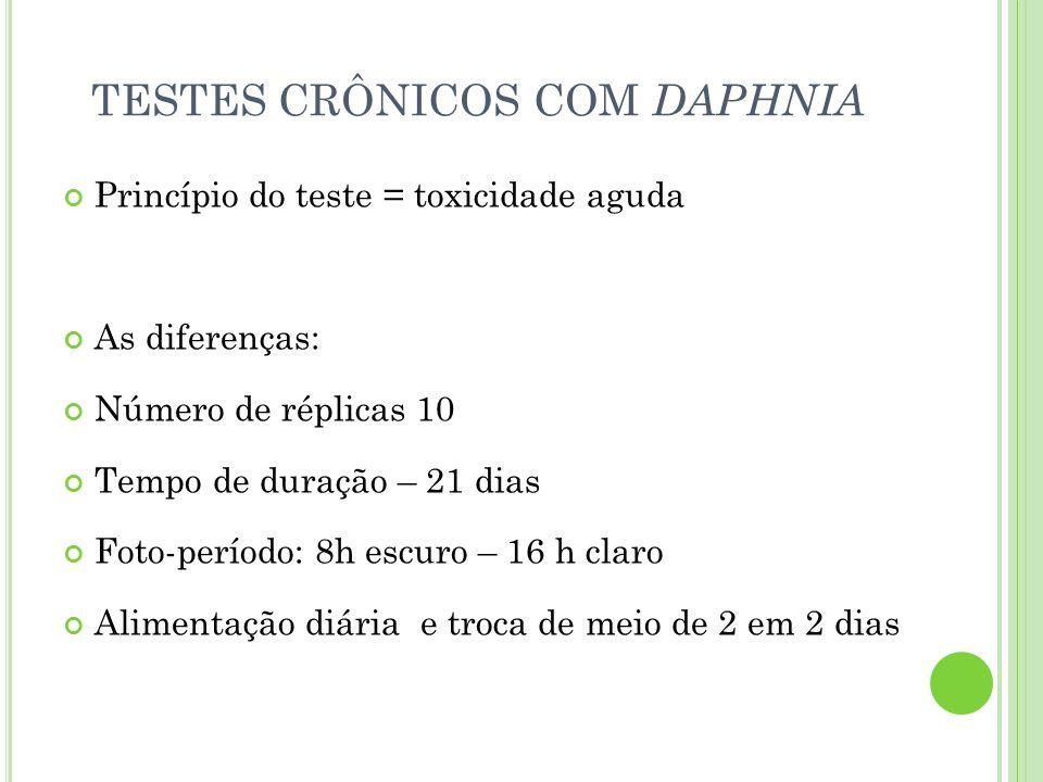 TESTES CRÔNICOS COM DAPHNIA