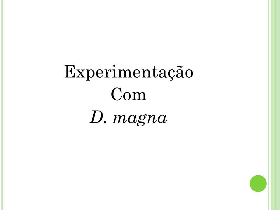 Experimentação Com D. magna