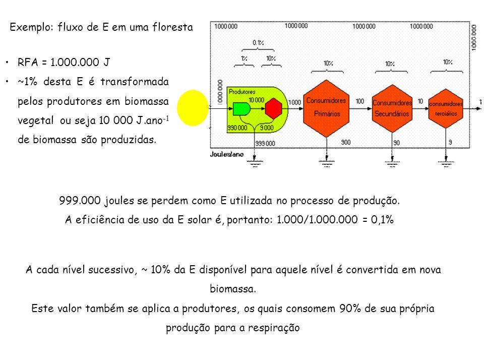 Exemplo: fluxo de E em uma floresta