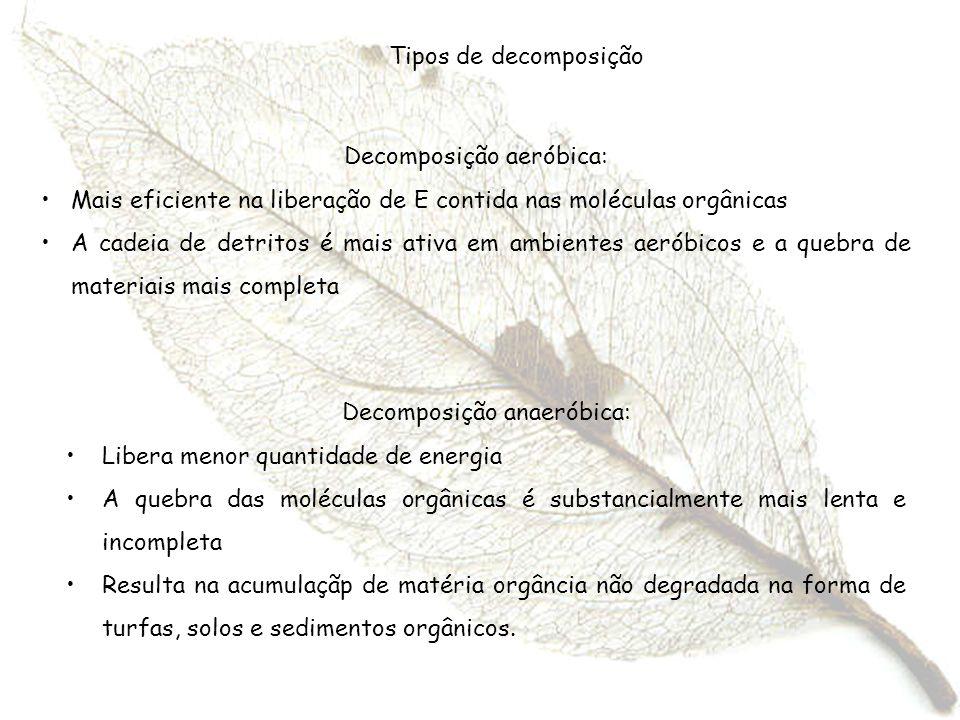 Decomposição aeróbica: