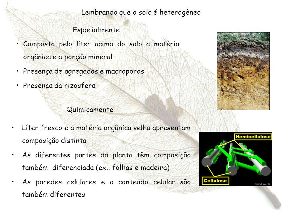 Lembrando que o solo é heterogêneo