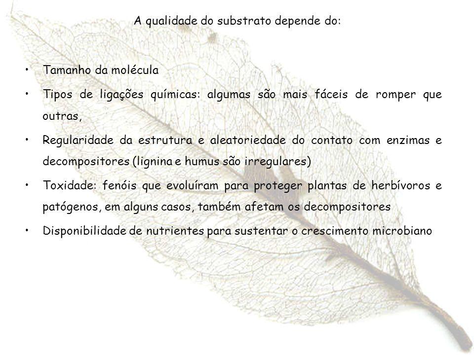 A qualidade do substrato depende do: