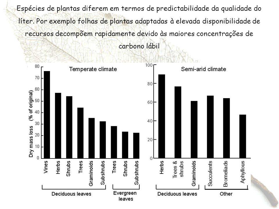 Espécies de plantas diferem em termos de predictabilidade da qualidade do líter.